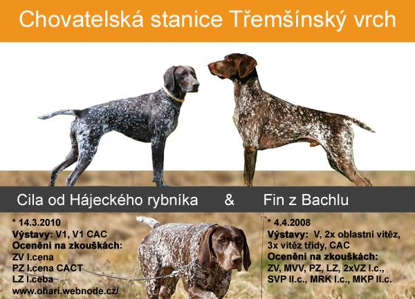tremsinsky-vrch-kryti-i