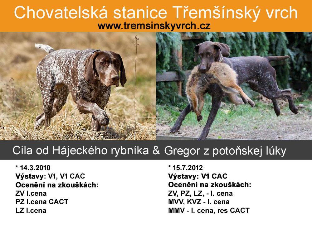 tremsinsky-vrch-kryti-ii